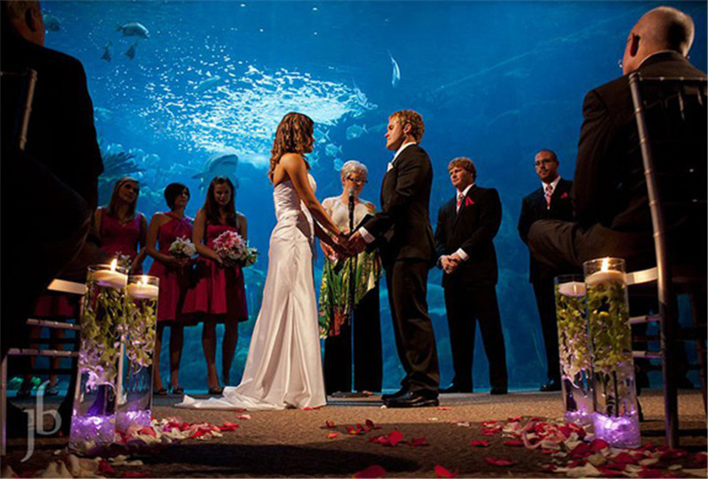 15 Best Places To Get Married In Tampa FL