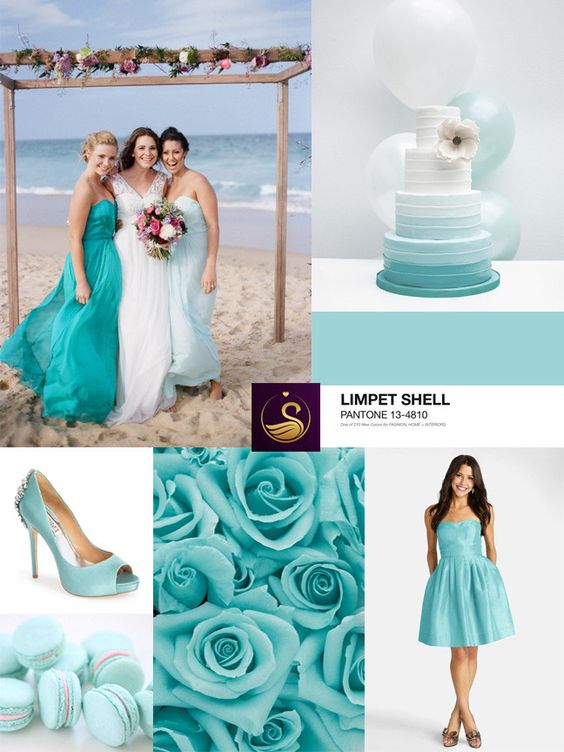 Blissful Limpet Shell With Aqua