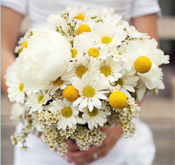 26 fresh and charming flowers in season in october everafterguide daisy the symbol of simplicity makes perfect centerpieces and bridal bouquets alone its best paired with yellow flowers like tulip or billy balls mightylinksfo
