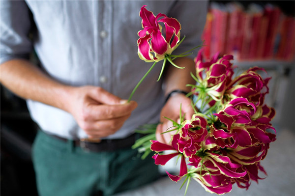 26 Fresh and Charming Flowers in Season in October - EverAfterGuide