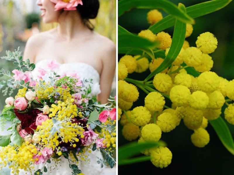 20 Best Flowers In Season May For Your Wedding
