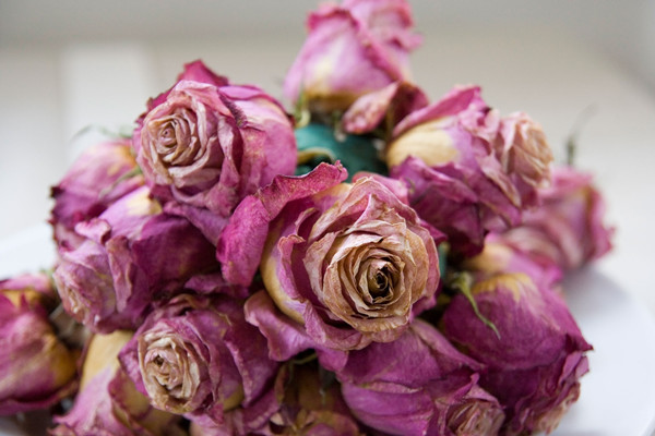 How to preserve wedding bouquet everafterguide how to preserve wedding bouquet solutioingenieria Image collections