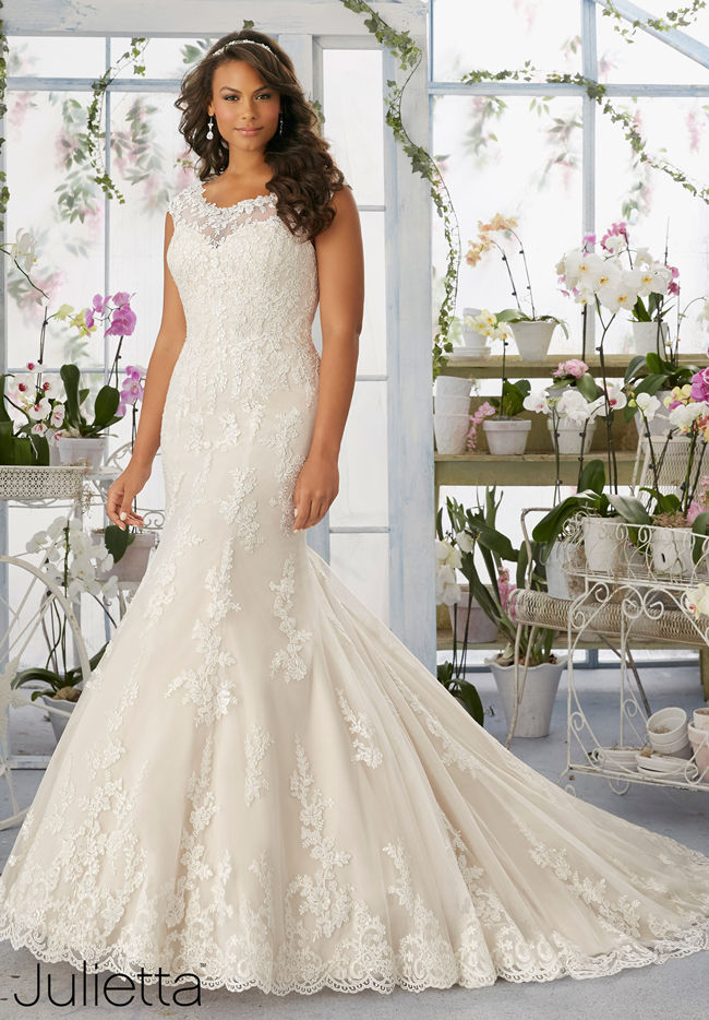 091530d6455 Fully-Lined Net Ivory Dress with Applique. The stunning bridal gown ...