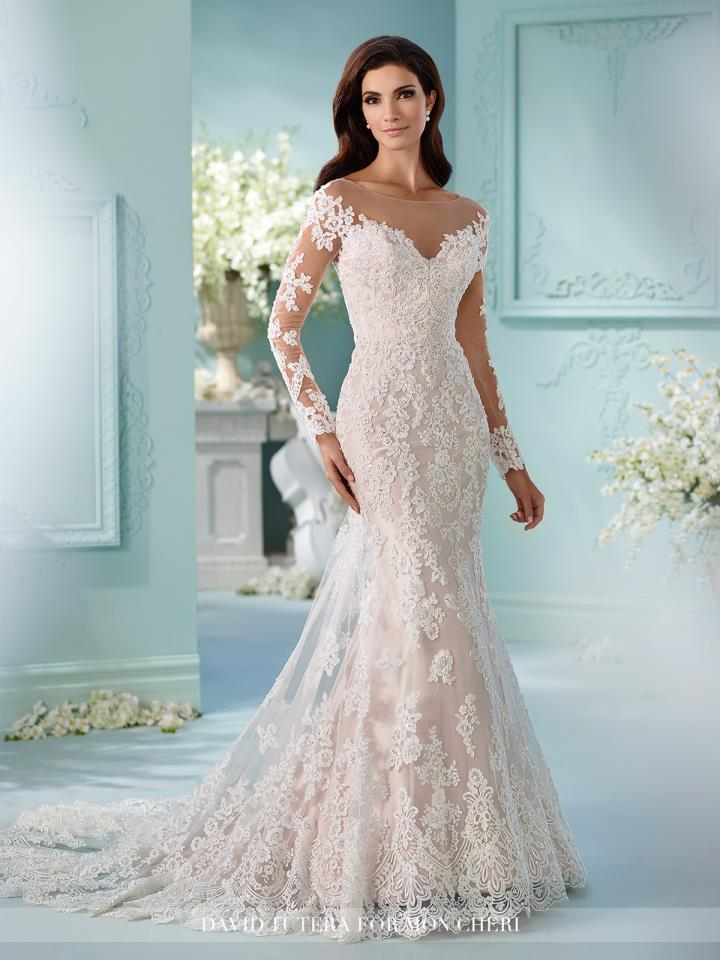 Form Fitting Lace Gowns