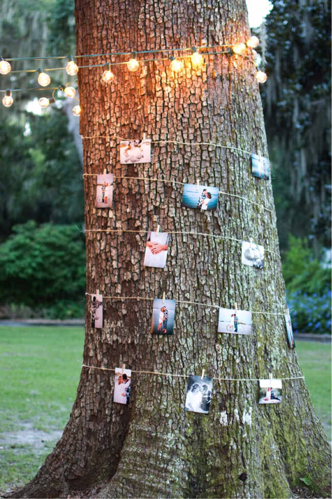 17 homemade wedding decorations for couples on a budget everafterguide story of us tree with photos junglespirit Images